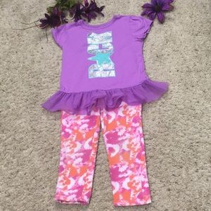 Garanimals Girls Purple and Pink Outfit Size 4T